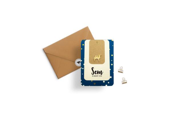 Geboortekaartje jongen blauw sterren goud goudfolie hout labelkaartje